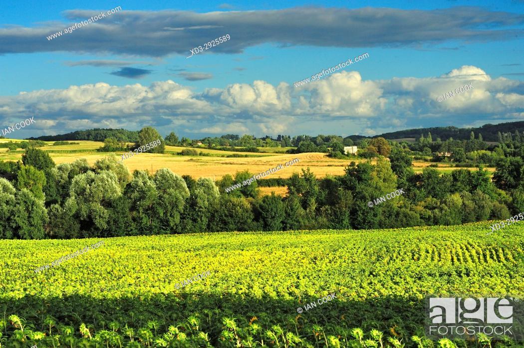 Stock Photo: countryside, Lot-et-Garonne Department, New Aquitaine, France.