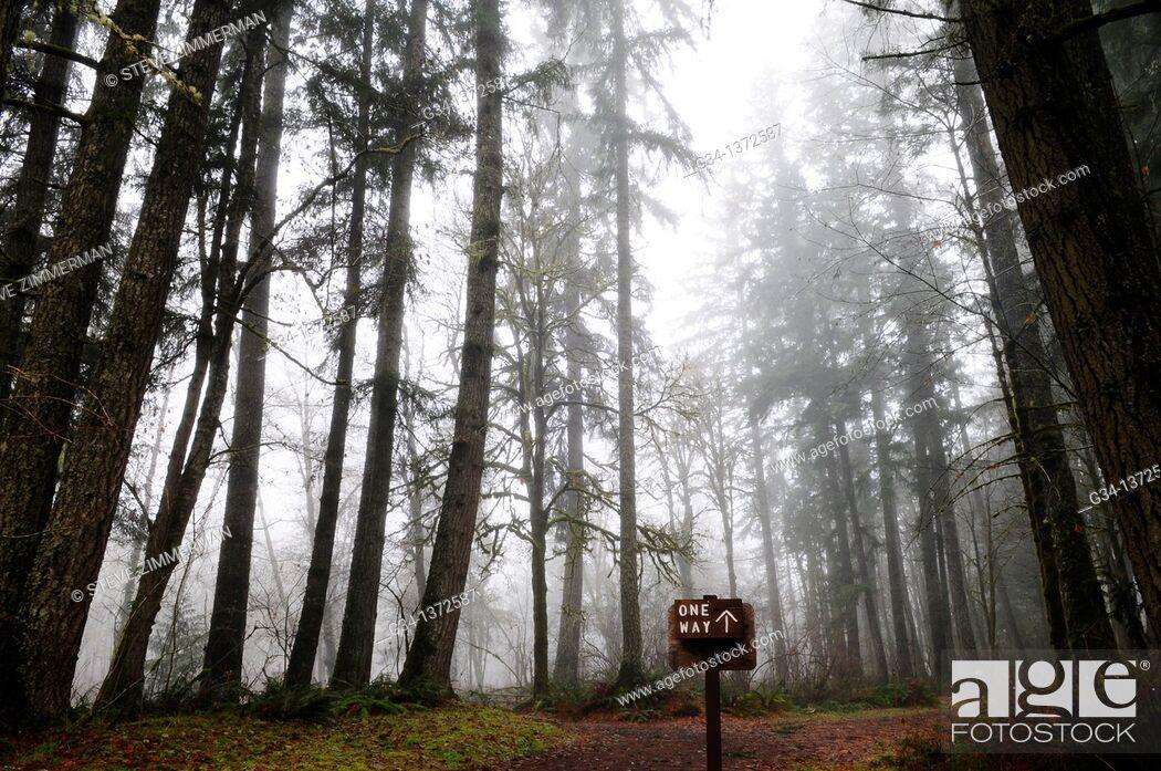 Stock Photo: One way up sign, Olympic Peninsula, Washington, USA.