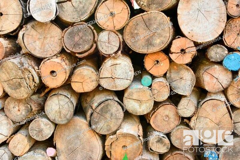 Imagen: Pile of wood logs.