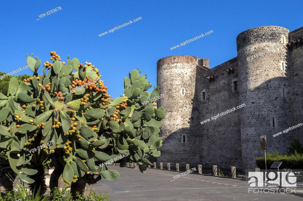 Stock Photo: Castello Ursino and Indian fig opuntia, Catania, Sicily, Italy.
