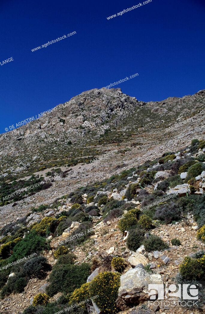 Imagen: Maquis shrubland and rocky hills, Tilos island, Greece.