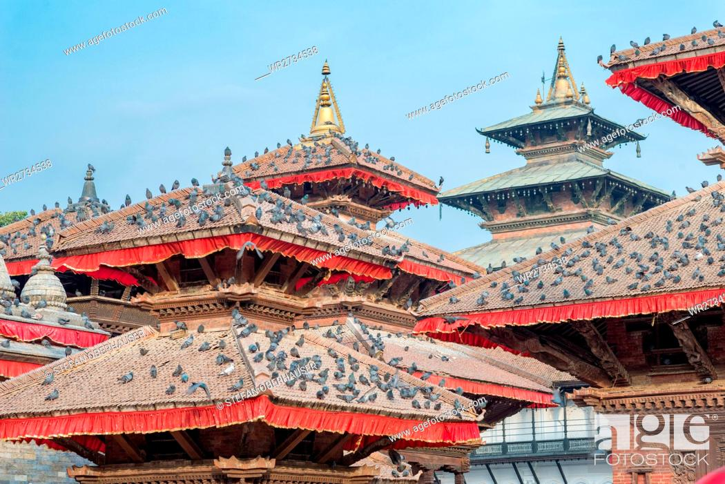 Imagen: Nepal, Central Region, Kathmandu, pigeons on the roofs of the Jagannath Temple at Durbar Square in Kathmandu.