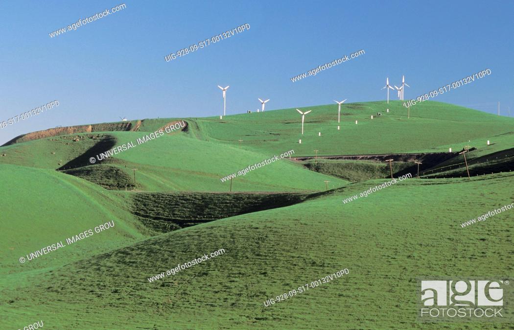 Stock Photo: California. Windmills. Highway 580 East.