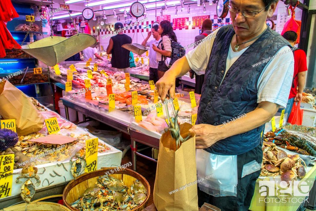 New York City, NY, USA, Chinese Fish Mongerer Bagging Live