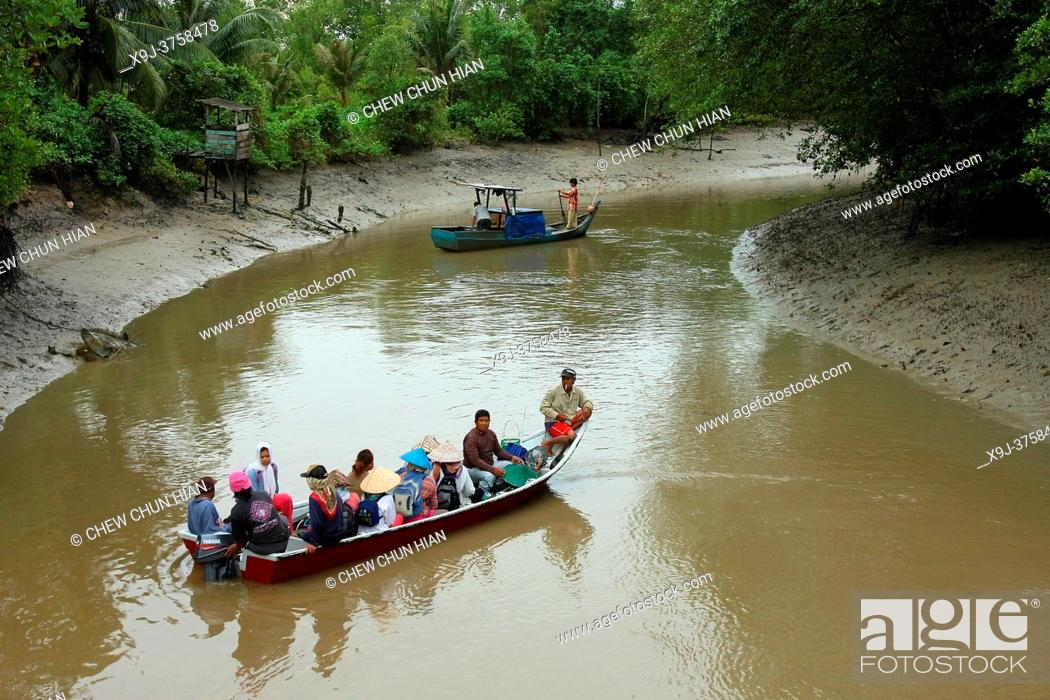Stock Photo: Local Buntal women going out to catch Bamboo Clam. Malaysia.
