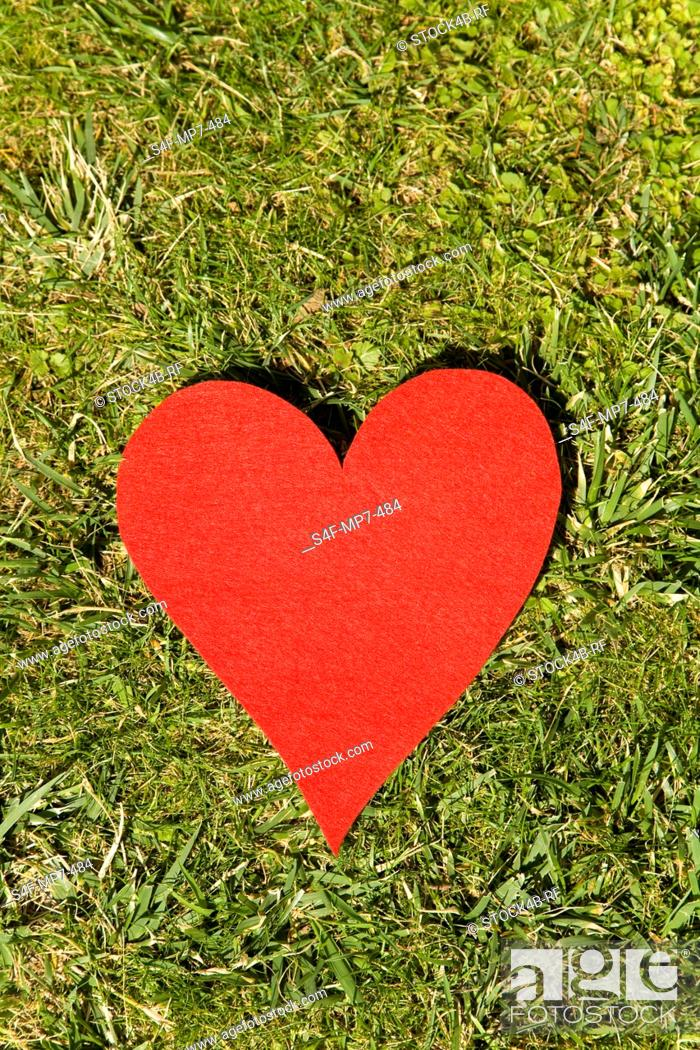 Stock Photo: Red heart lying in grass.