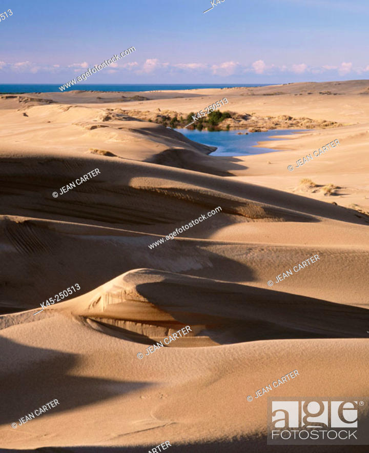 Stock Photo: Sand dunes and lake in Oregon Dunes National Recreation Area. Oregon. USA.