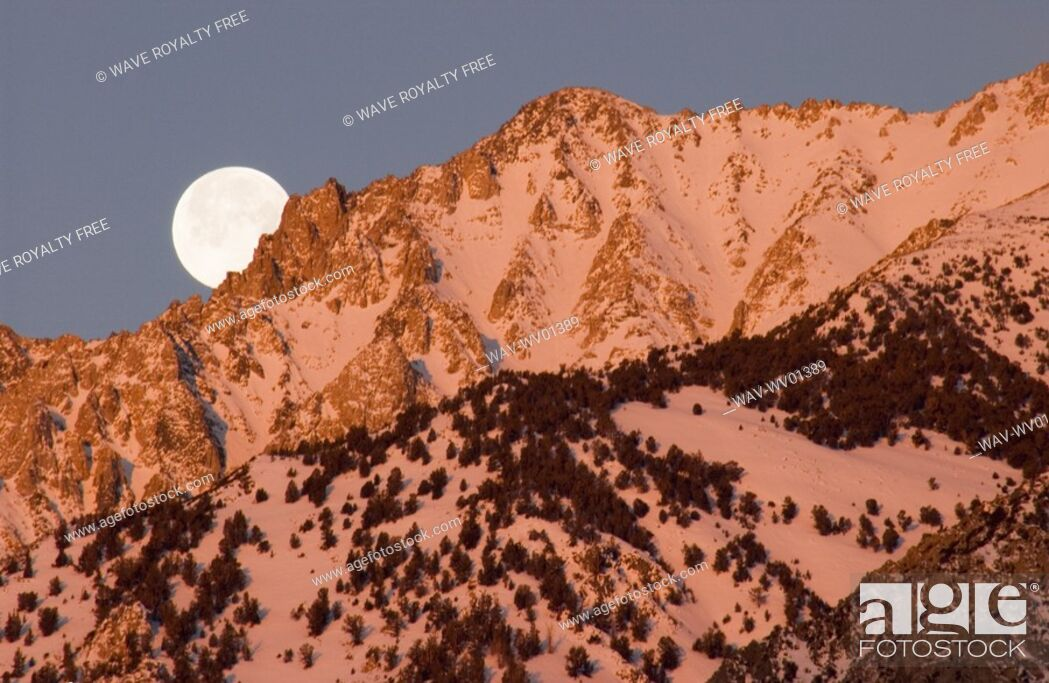 Stock Photo: Moonset at Sunrise over the Sierra Mountains near Bishop, California.