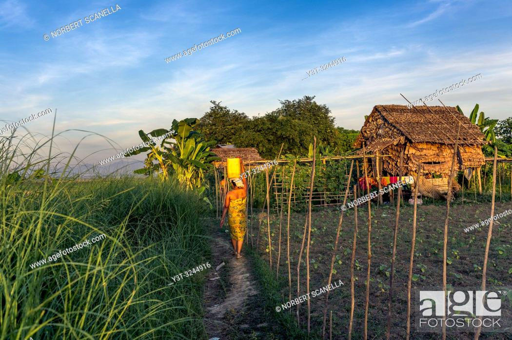 Stock Photo: Myanmar (formerly Burma). Kayin State (Karen State). Hpa An. Peasant village. Fieldwork. Young woman carrying a water can.