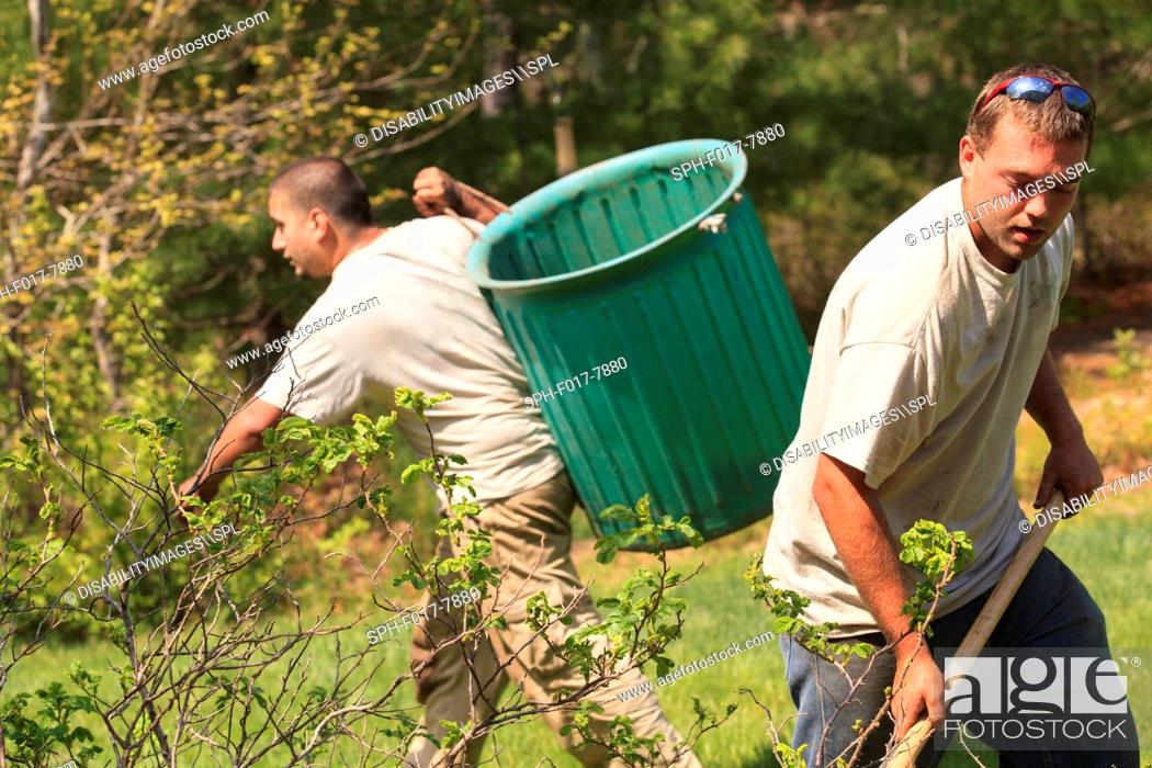 Stock Photo: Landscapers raking and removing weeds.