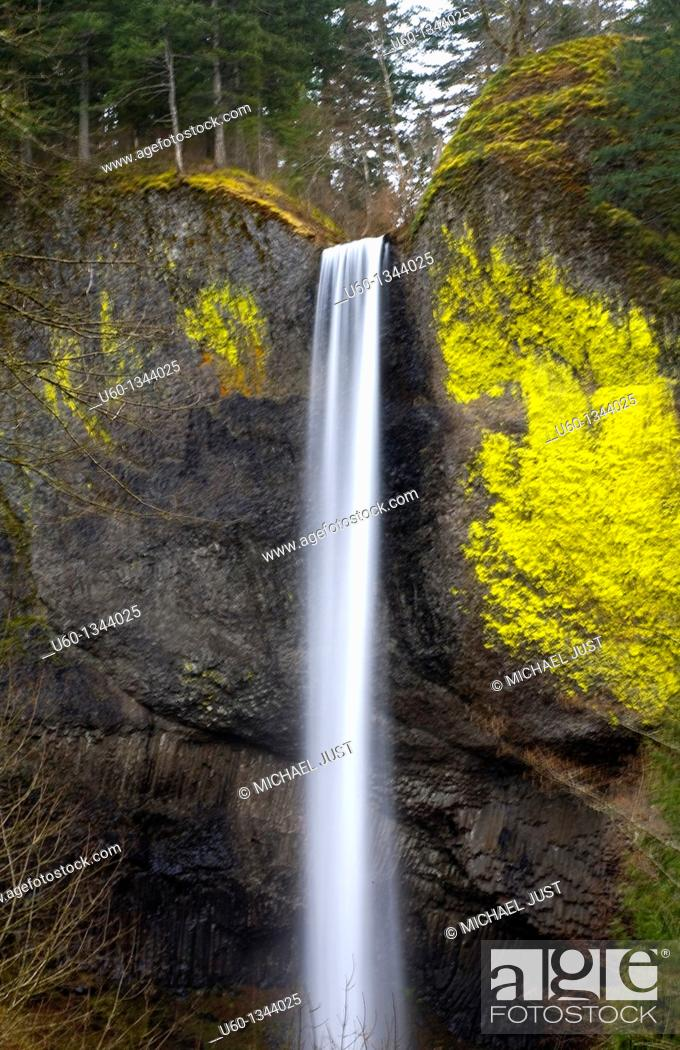 Stock Photo: Latourell Falls at the Columbia River National Recreation Area near Portland, Oregon.