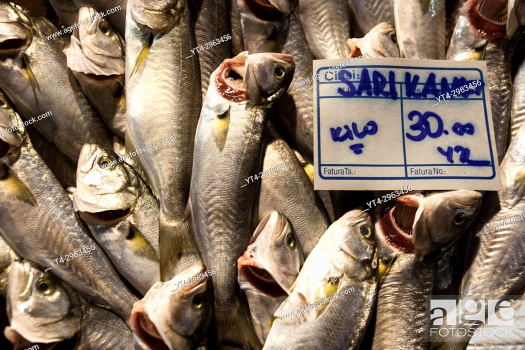 Stock Photo: Display of Fresh Fish, Galatsaray Fish Market, Beyoglu, Istanbul Turkey.