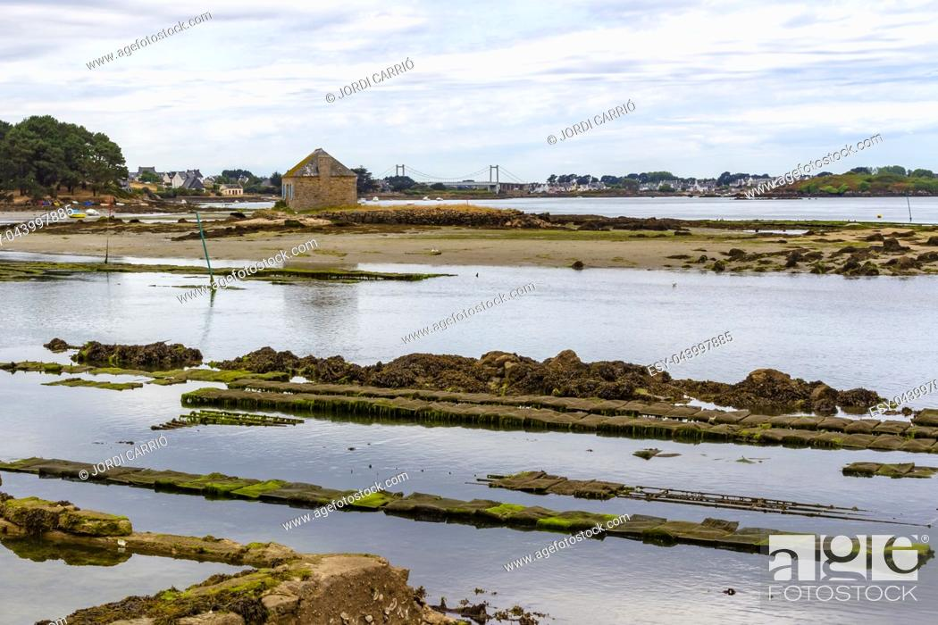 Stock Photo: Views of the oyster and mollusc farming areas in Île du Saint-Cado, Brittany, France.