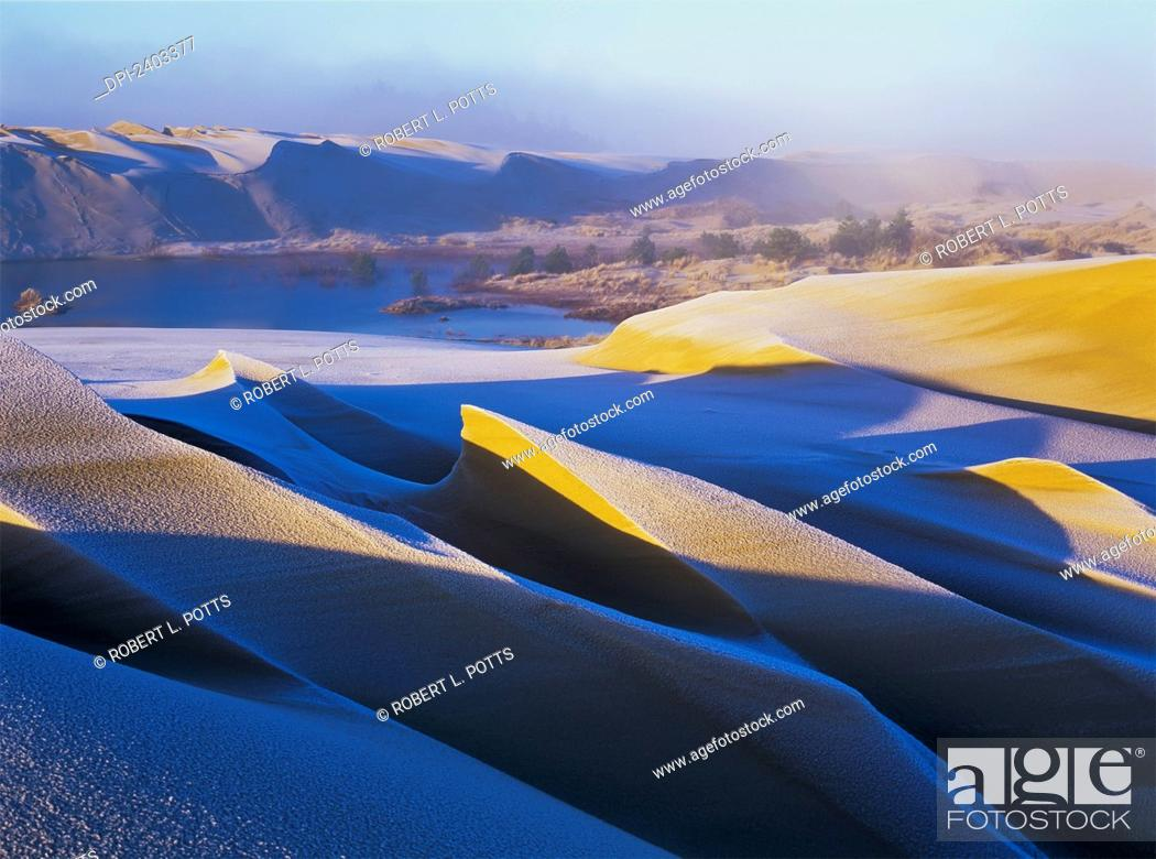 Stock Photo: Frost and sunlight decorate the sand dunes; Lakeside, Oregon, United States of America.