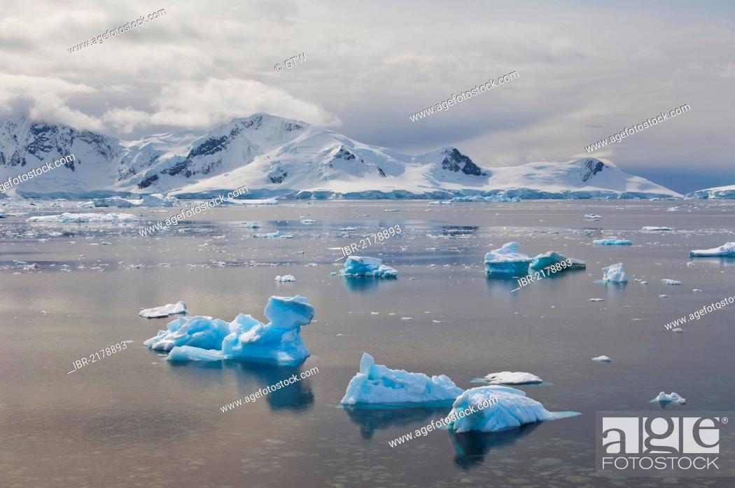 Imagen: Floating ice, Bahia Paraiso, Paradise Bay, Antarctic Peninsula, Antarctica.
