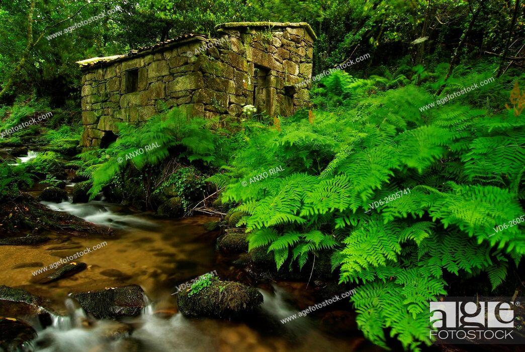 Imagen: Spain. Galicia. Pontevedra. Rias Baixas. Mill in Meis.