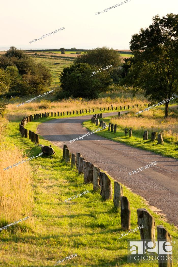 Stock Photo: country park track with wooding edging posts to prevent verge parking.