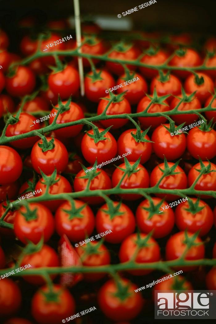 Stock Photo: Cherry tomato. Market in Bordeaux. Gironde. Aquitaine. France. Europe.