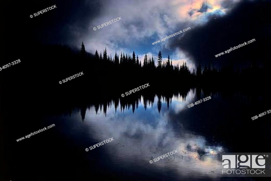 Stock Photo: Reflection of trees in the lake, Reflection Lake, Mt Rainier National Park, Washington State, USA.