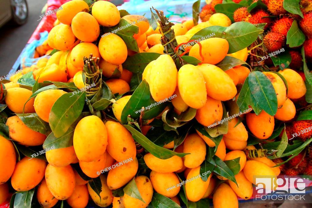 Imagen: A heap of apricots at a market, siem reap, combodia.