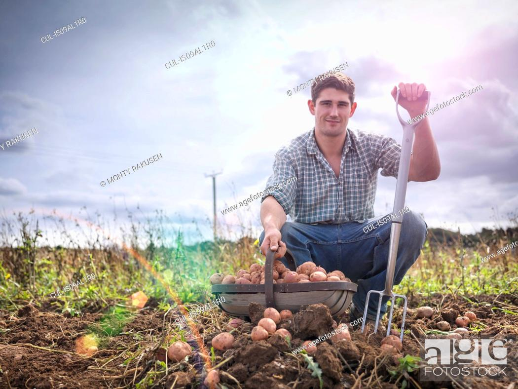 Stock Photo: Portrait of farmer with basket of organic potatoes.