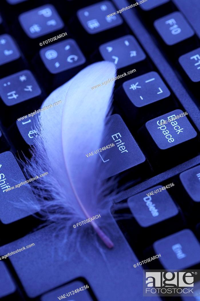 Stock Photo: Feather and keyboard.