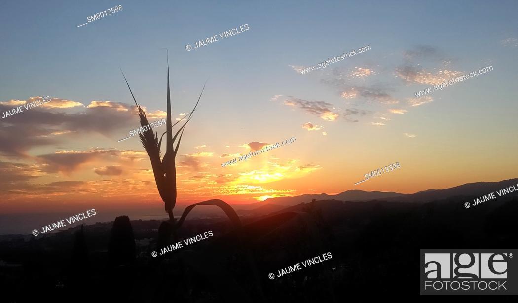 Imagen: Sunset. Maresme, Barcelona province, Catalonia, Spain.