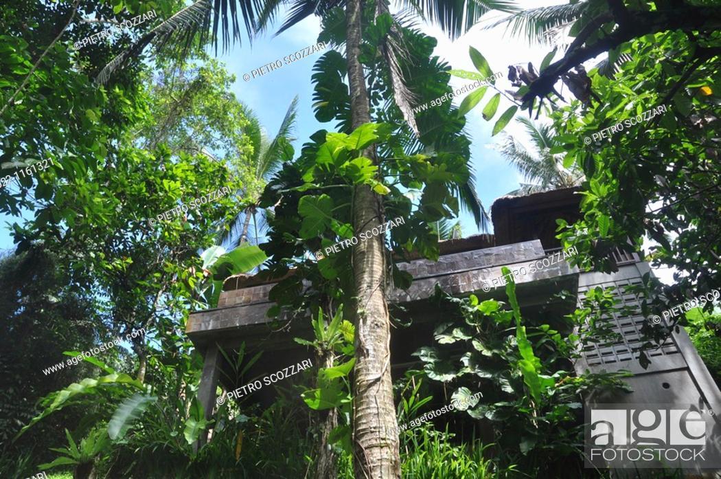 near Ubud (Bali, Indonesia): a villa at the Ubud Hanging Gardens ...