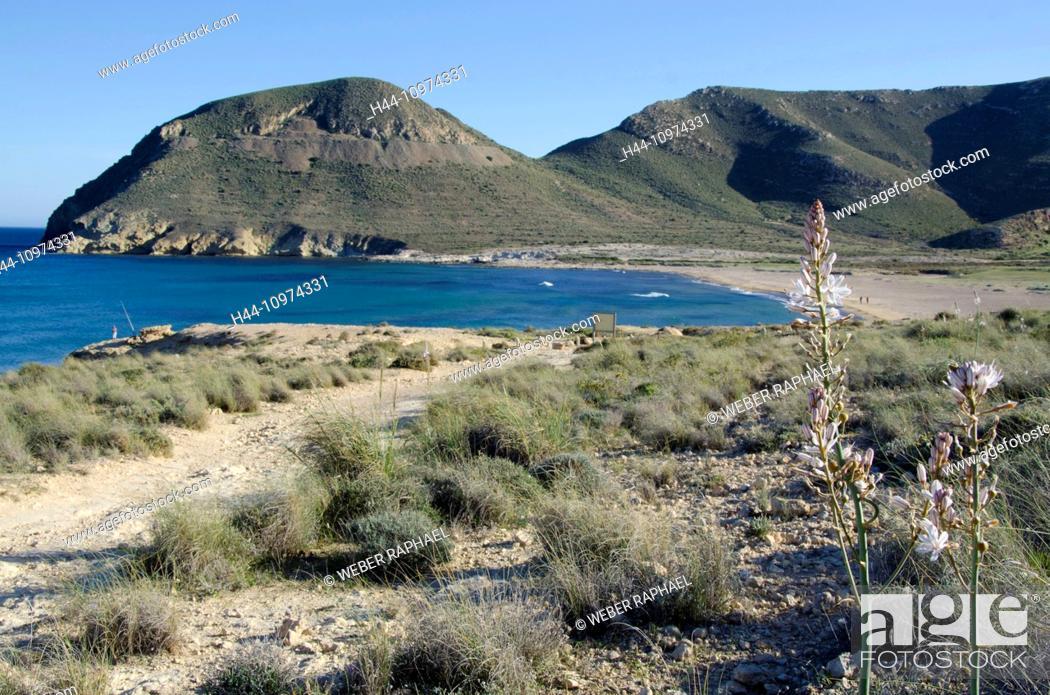 Stock Photo: Spain, Cabo de Gata, nature reserve, Almeria, Rodalquilar, coast, Mediterranean Sea, beach, seashore, sand beach, Playazo.