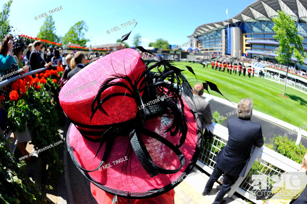 Stock Photo: England, Berkshire, Ascot. An elaborate hat worn by a woman attending day two of Royal Ascot 2010.