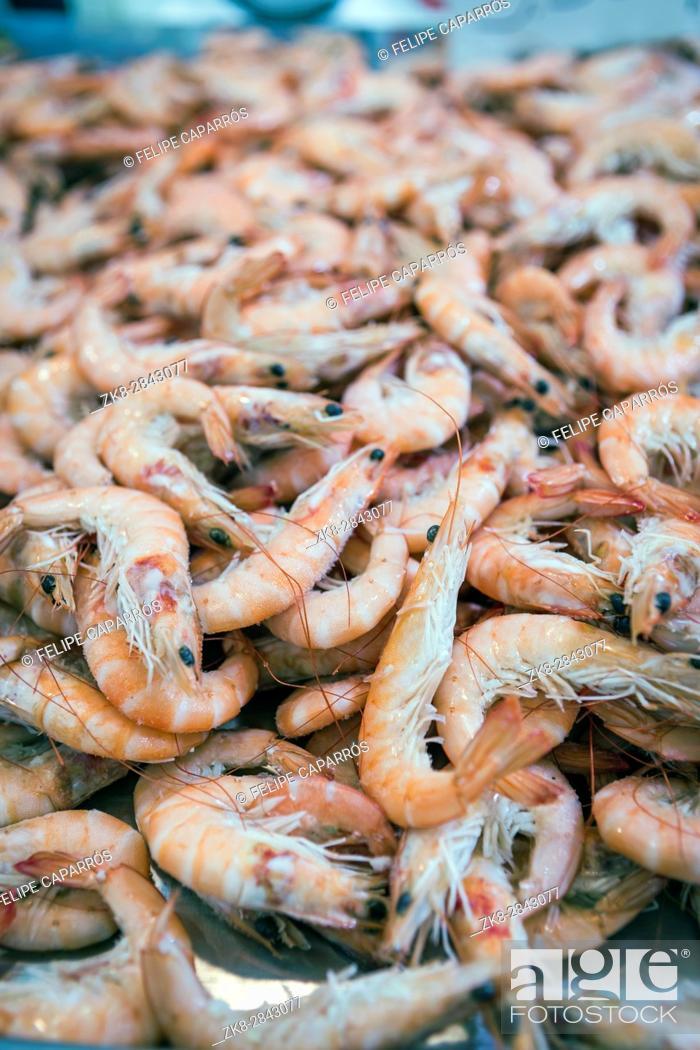 Stock Photo: Bunch of Fresh shrimp on the local fish market in Cadiz, Spain.