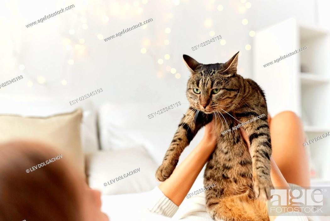 Stock Photo: pets, comfort, christmas, winter and people concept - young woman with cat lying in bed at home.