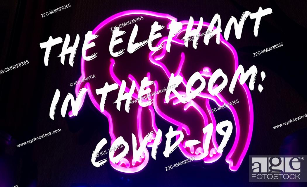 Stock Photo: A play on the English idiomatic expression, the elephant in the room. A pictograph of a pink elephant and words overlay, Canada.