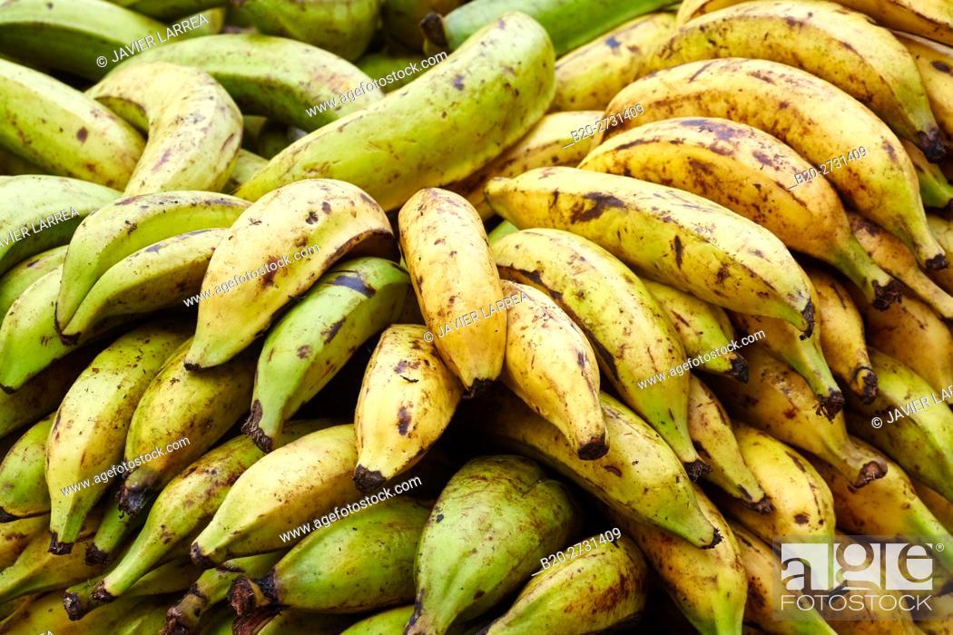 Stock Photo: Bananas, Fruits, Cartagena de Indias, Bolivar, Colombia, South America.