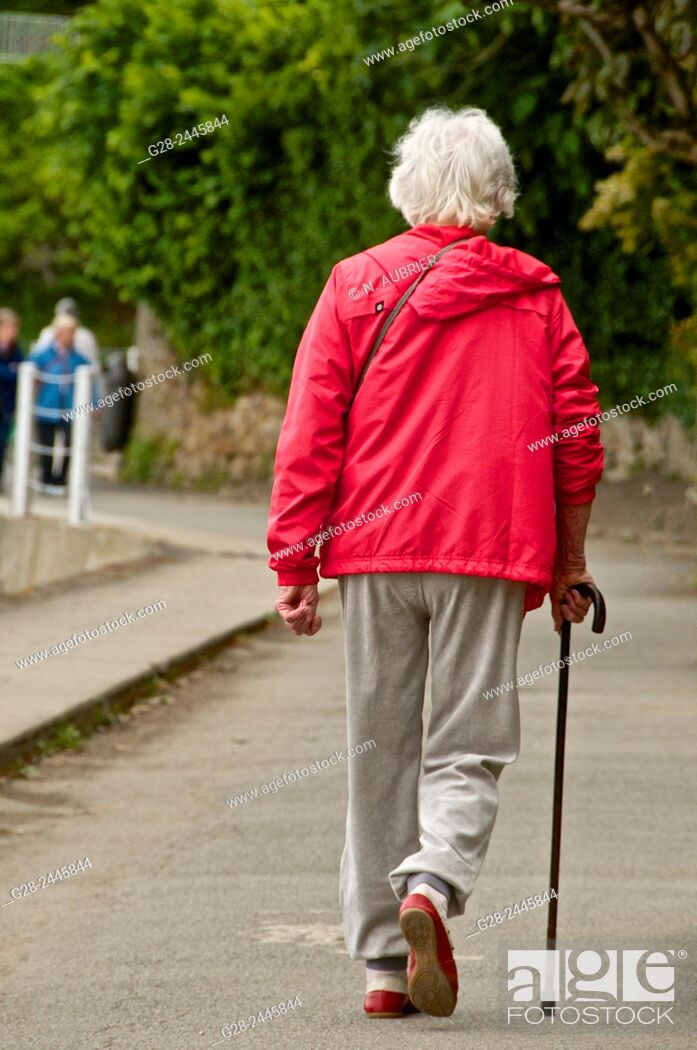 Stock Photo: Senior woman with white hair, dressed in a red top beige slacks and sports shoes, walking with the help of a walking stick, seen from behind.