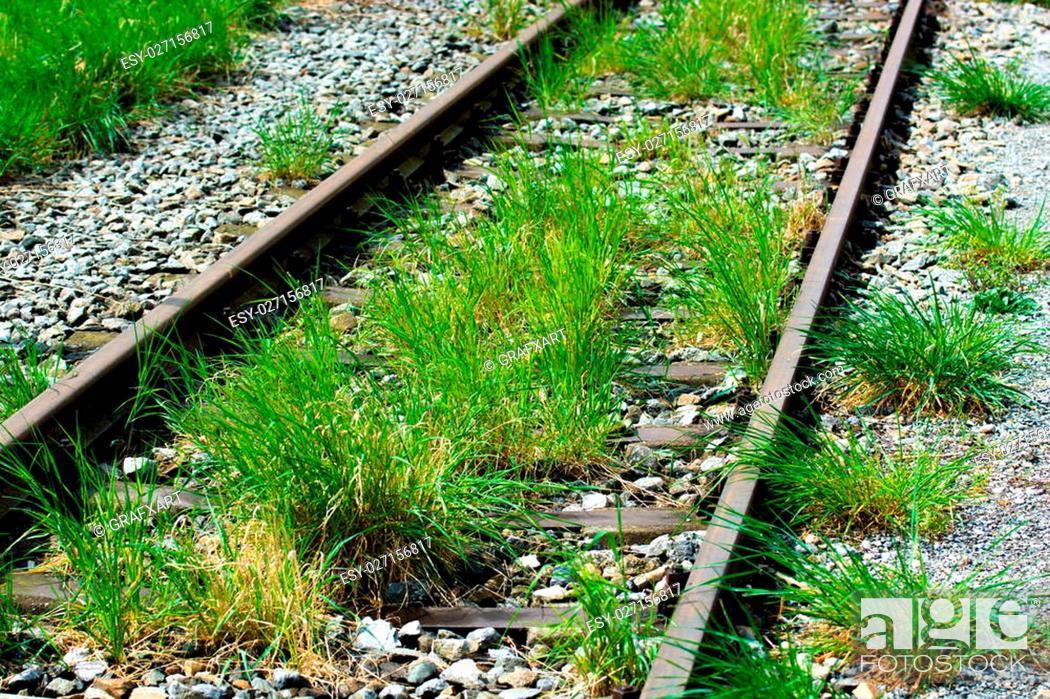 Stock Photo: Rail Tracks With Grass.