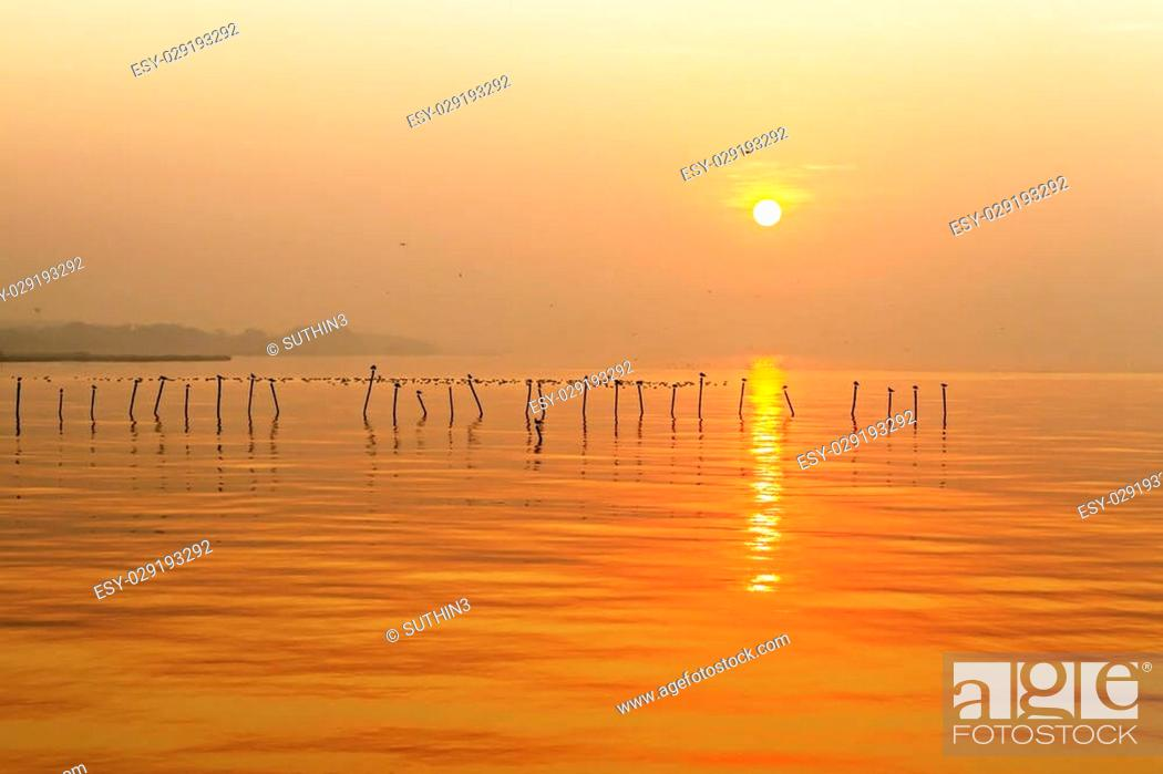 Stock Photo: Morning sunrise with seagull at Bang Pu Seaside of Thailand.