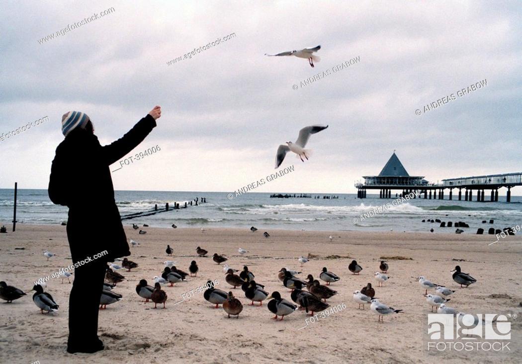 Stock Photo: Woman feeding birds on a beach.