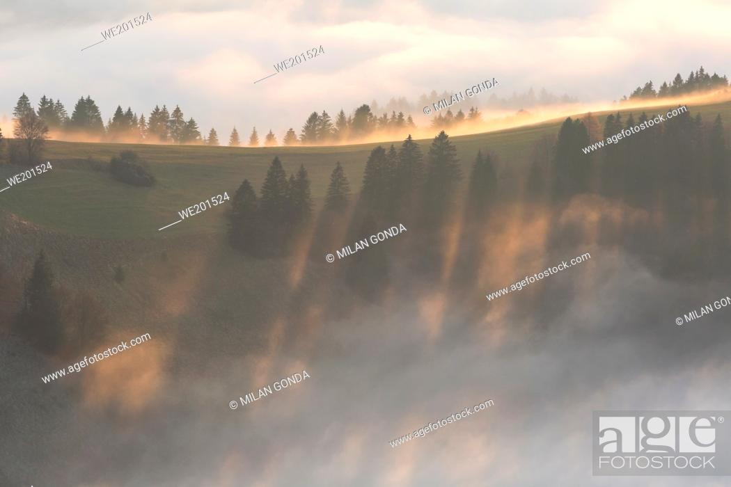 Stock Photo: Fog in the foothills of Velka Fatra national park, central Slovakia.