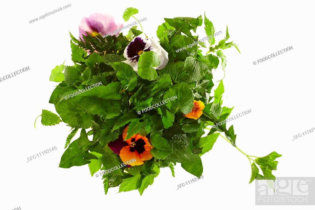 Stock Photo: Ingredients for wild herb salad.