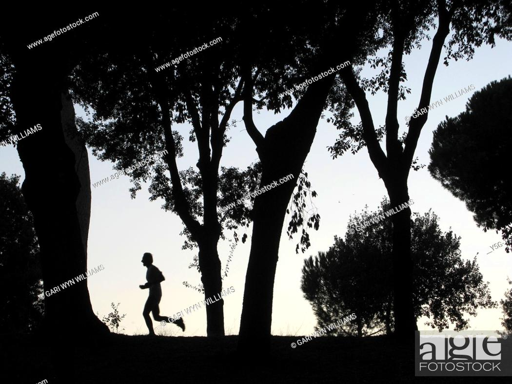 Stock Photo: silhouette lonely runner in woods at dusk.