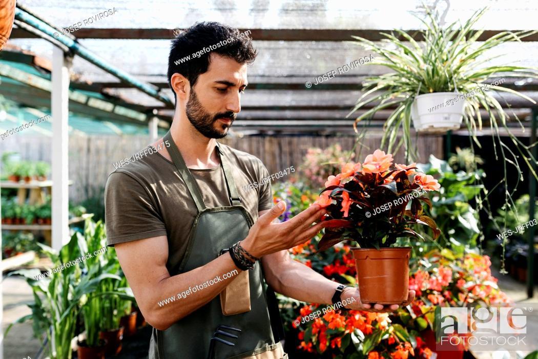 Imagen: Worker in a garden center caring for a flower.