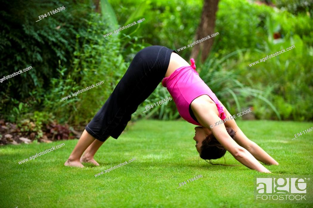 Photo de stock: 25 year old brunette woman in a garden settng wearing work out clothing doing  the yoga pose downward facing dog.