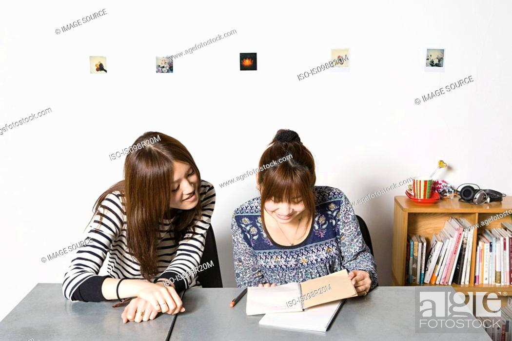 Stock Photo: Young women looking at notebook.