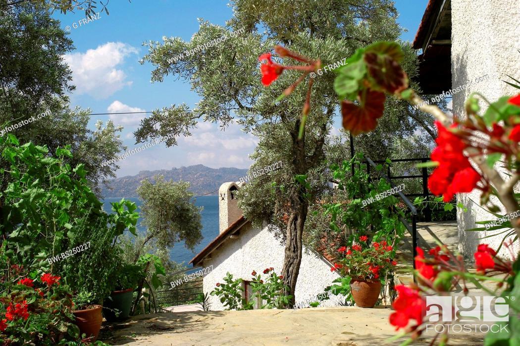 Stock Photo: hotel at Lake Bafa, Turkey, West Anatolia.