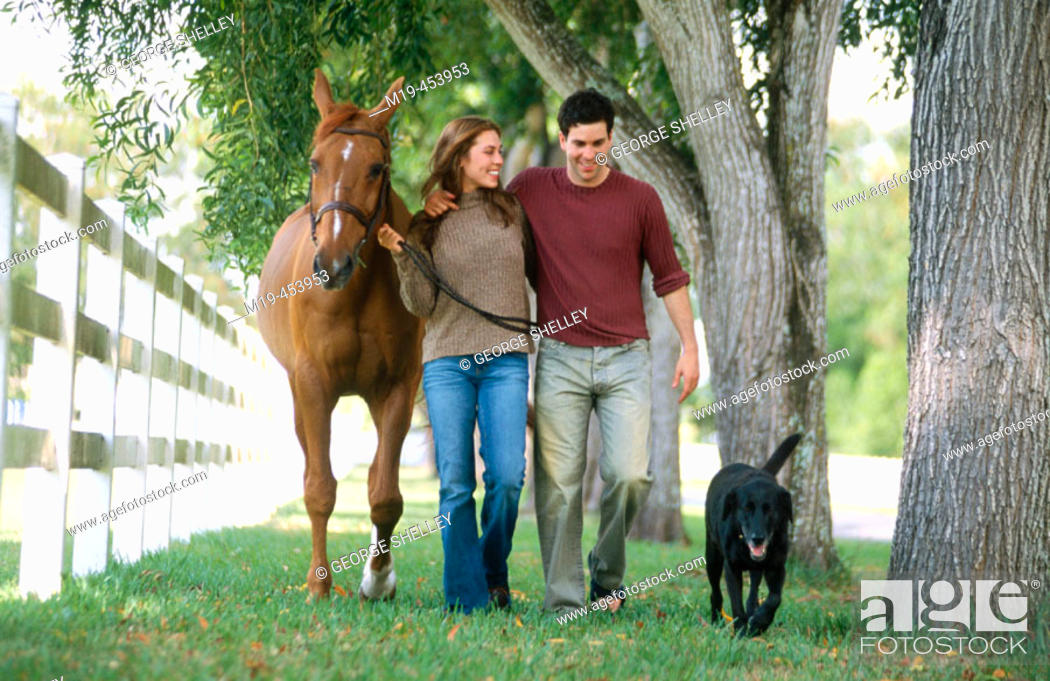 Stock Photo: couple walking with a dog and their horse.