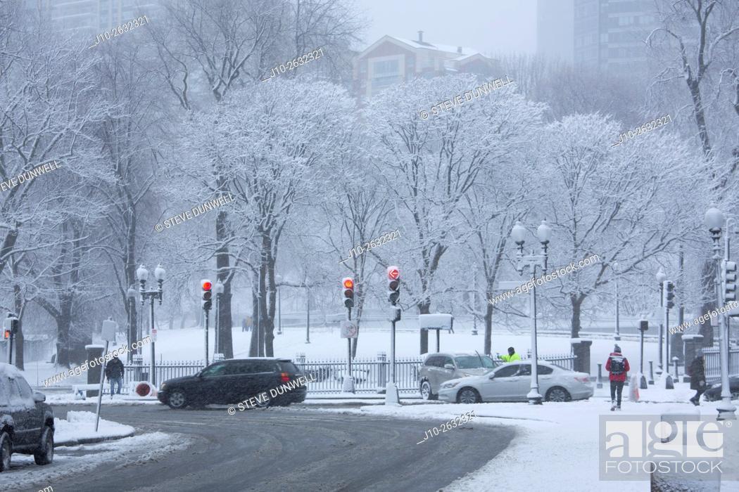 Stock Photo: Winter snow, Public Garden, Boston, Massachusetts, USA.