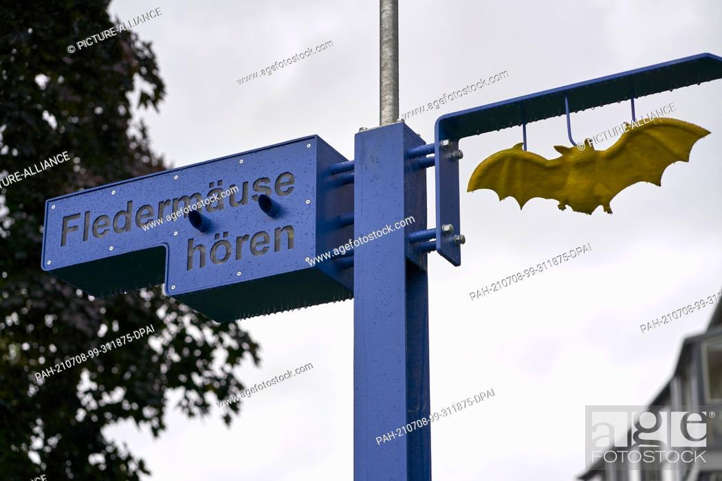 Stock Photo: 08 July 2021, Rhineland-Palatinate, Boppard: NABU Rhineland-Palatinate is setting up public bat detectors at four different locations in Rhineland-Palatinate as.
