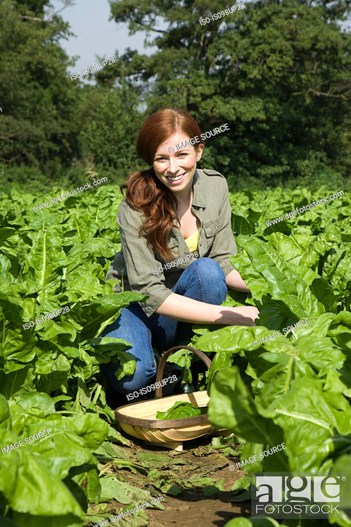 Stock Photo: Young woman in field with basket.