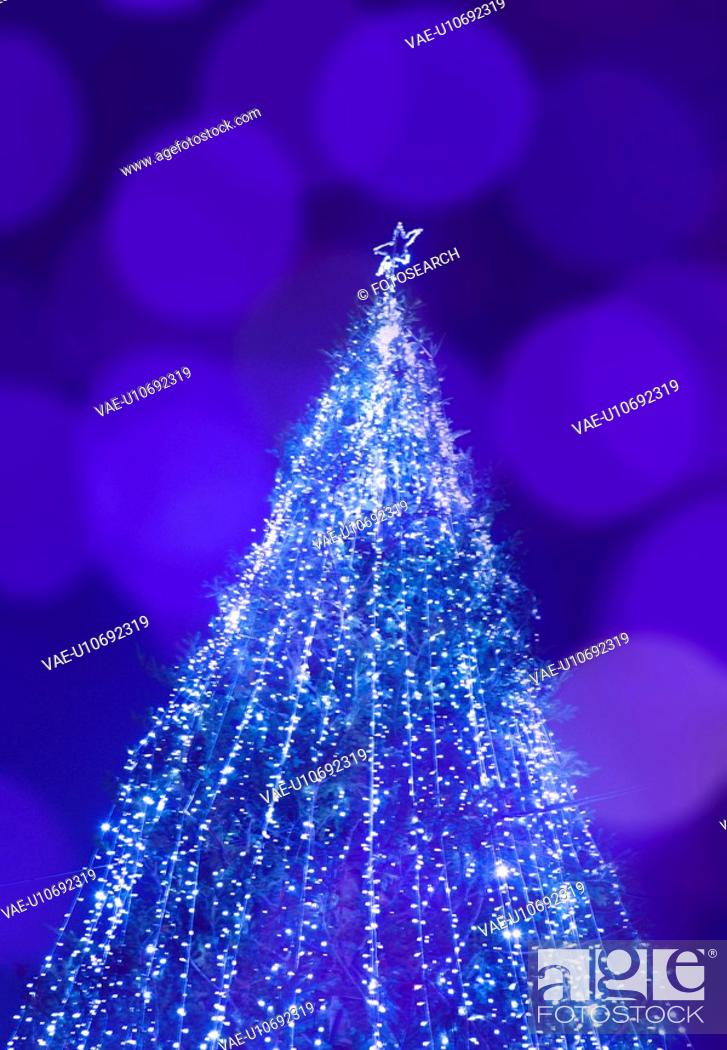 Stock Photo: Christmas tree.